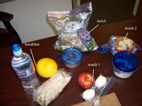Chelle's clean eating cooler for Tuesday, Feb 8, 2011. 1300 calories